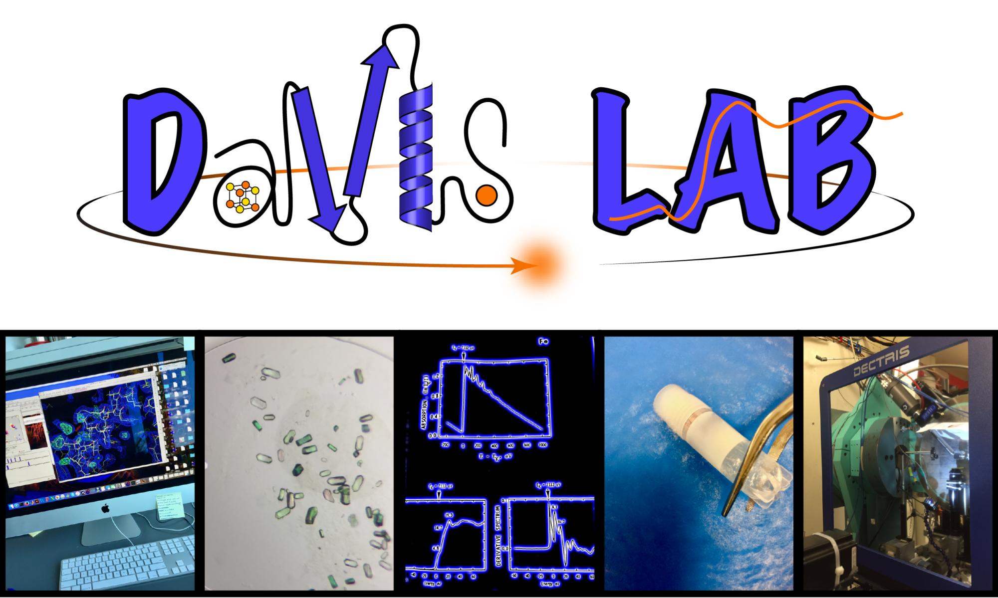 The Davis Lab
